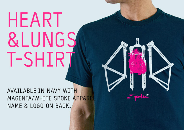 home-banner-heart-and-lungs